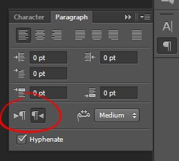 CS6 Paragraph Style Panel After Middle Eastern Features