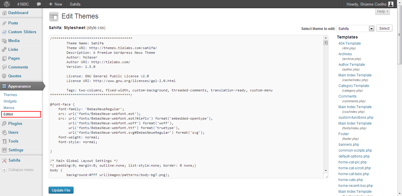 WordPress Editor Edit Themes