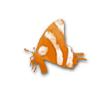 Butterfly RSS Icon